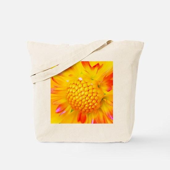 Unique Radiance Tote Bag