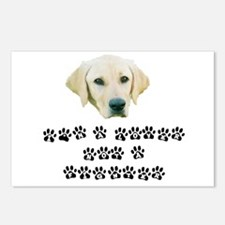LNF Jack Paws Postcards (Package of 8)