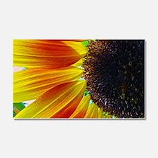 Sunflower Car Magnet 20 x 12