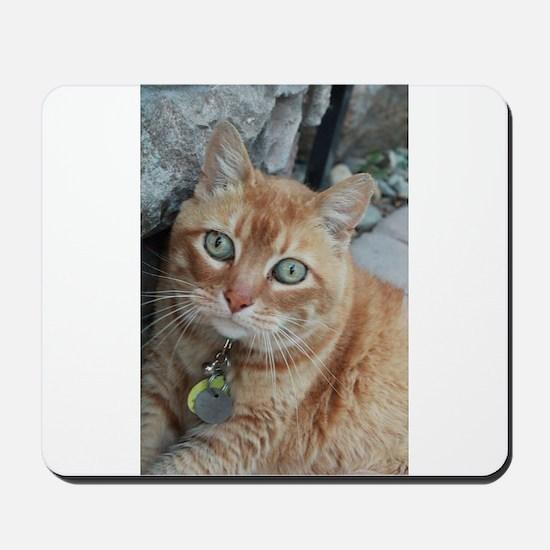 orange kitty Simba Mousepad