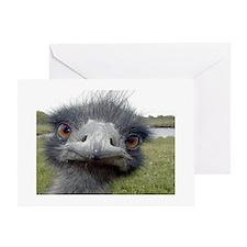 Peek-A-Boo Ostrich Greeting Cards