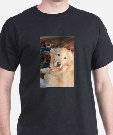 Nala golden retriever T-Shirt