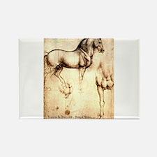 Leonardo da Vinci Study of Horses Magnets