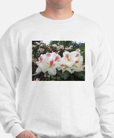 Hello Rhododendron Sweater