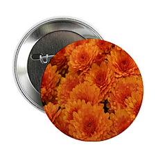"Orange Fall Mums 2.25"" Button"