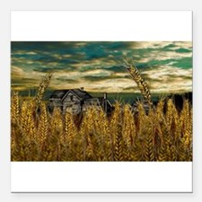 "Farm House in Wheat Field Square Car Magnet 3"" x 3"