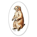 Prairie Dog Oval Sticker
