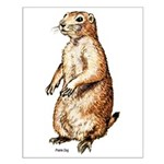 Prairie Dog Small Poster