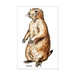 Prairie Dog Mini Poster Print