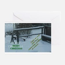 Cool Beach photo christmas Greeting Cards (Pk of 20)
