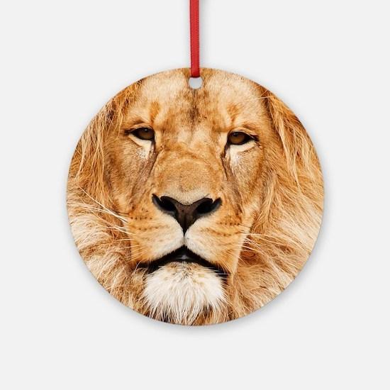 Lion Photograph Round Ornament