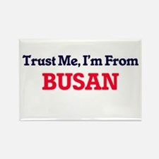 Trust Me, I'm from Busan South Korea Magnets