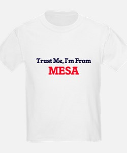 Trust Me, I'm from Mesa Arizona T-Shirt