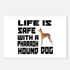 Life Is Safe With Pharaoh Postcards (Package of 8)