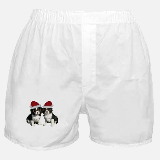 Untitled-1.png Boxer Shorts