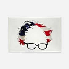 Bernie Flag Hair Magnets