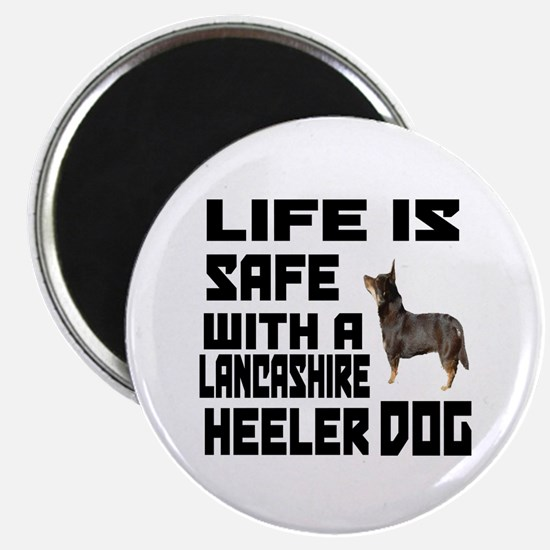 Life Is Safe With A Lancashire Heeler Magnet
