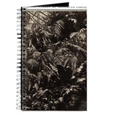 Graceful Ferns Journal