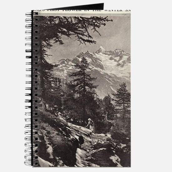 Alpine Snow Journal