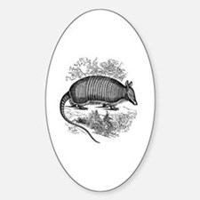 Cute Armadillos Decal