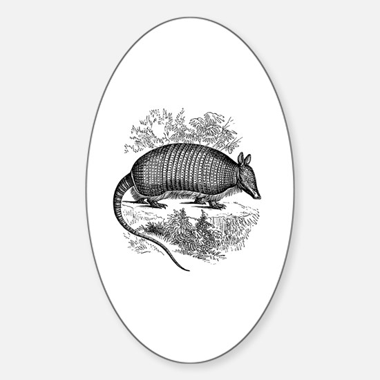 Cute Armadillo Sticker (Oval)