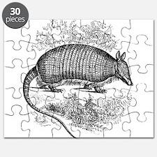 Cute Armadillo Puzzle