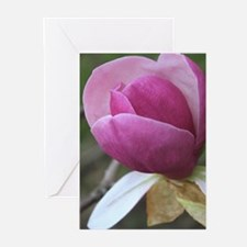Chinese Magnolia Bud Greeting Cards