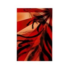 Cute Fox red Rectangle Magnet