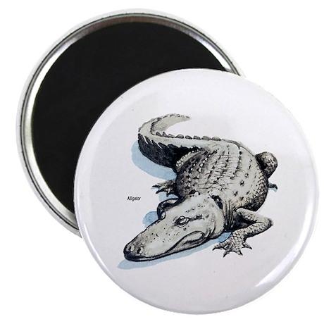 """Alligator Gator 2.25"""" Magnet (10 pack)"""