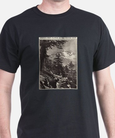 Alpine Snow T-Shirt