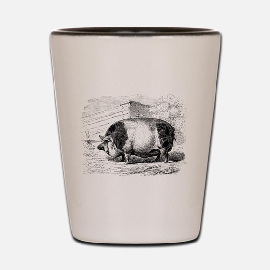 Cute Pigs Shot Glass