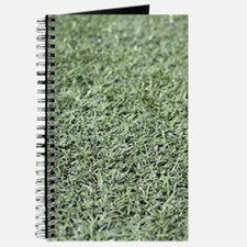 Grass AstroTurf Journal