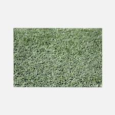Grass AstroTurf Magnets