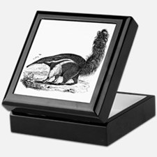 Unique Anteater Keepsake Box