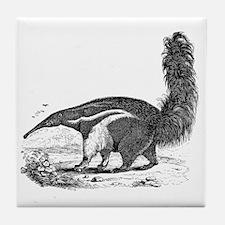 Unique Anteater Tile Coaster
