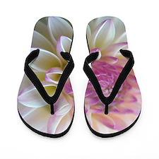 Softly Flip Flops