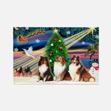 XmasMagic/3 Shelties(t3) Rectangle Magnet