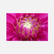 Pink dahlia Rectangle Magnet