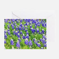Unique Bluebonnet Greeting Card