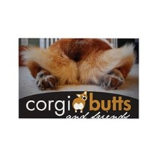 corgibuttscover Magnets