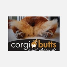 corgibuttscover Magnets