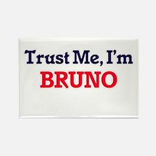 Trust Me, I'm Bruno Magnets