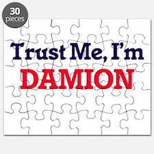 Trust Me, I'm Damion Puzzle