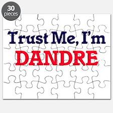 Trust Me, I'm Dandre Puzzle