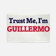 Trust Me, I'm Guillermo Magnets