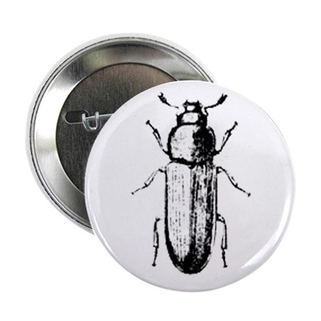"confused beetle 2.25"" Button (10 pack)"
