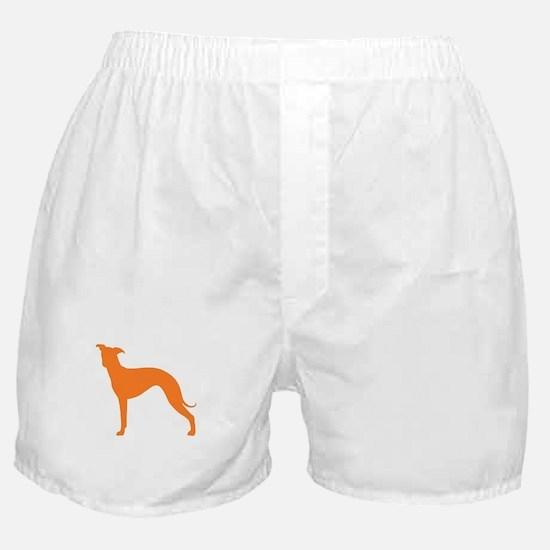 Greyhound Two Orange 1 Boxer Shorts