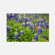 Funny Indian paintbrush Rectangle Magnet