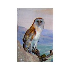 barn owl 3 Rectangle Magnet