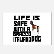Life Is Safe With A Bracc Postcards (Package of 8)